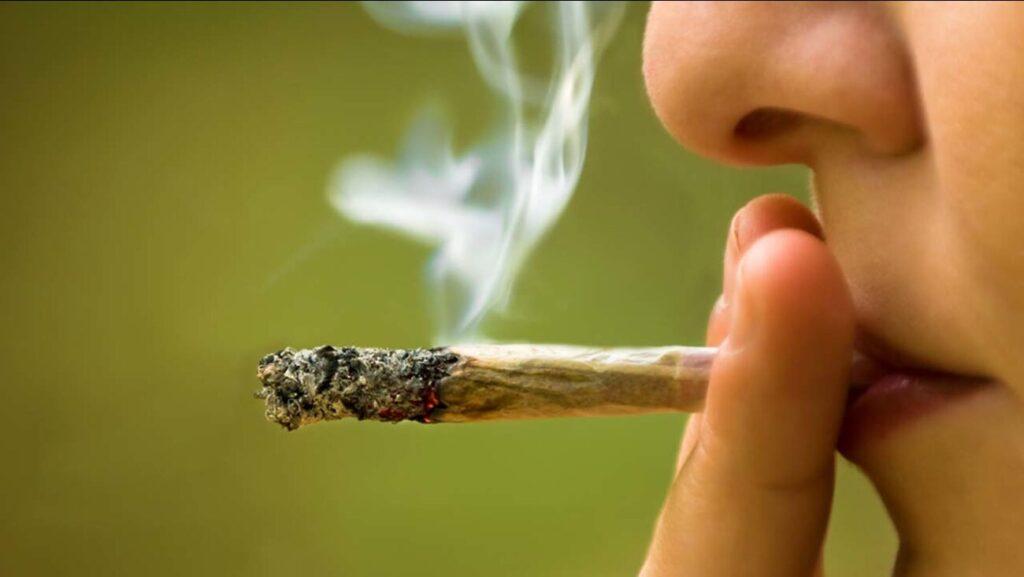 Myths and facts about CBD: CBD won't make you high like THC.