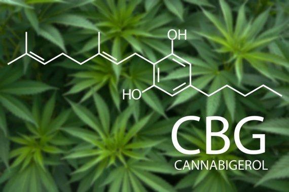 CBG Cannabigerol Tea