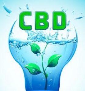 CBD Water with hemp plant