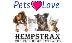 cbd benefits for dogs explained by hempstrax
