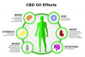 CBD Oil Uses and Benefits Infographic